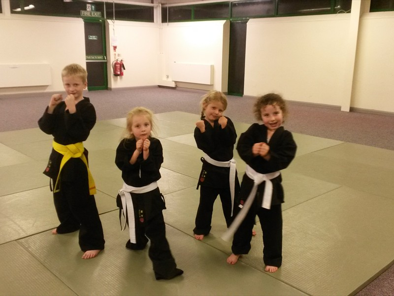 Young Martial Artists