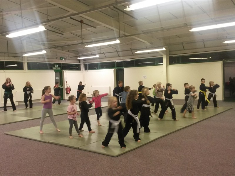 Young martial Artists in the HLC hall Scott Business park